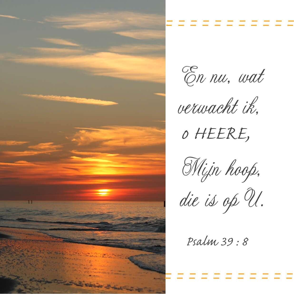 Bijbeltekst 2202